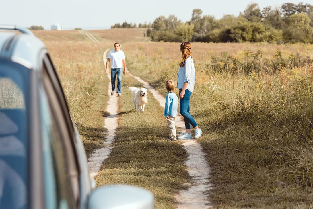 Focusing On Education During Your Summer Road Trip